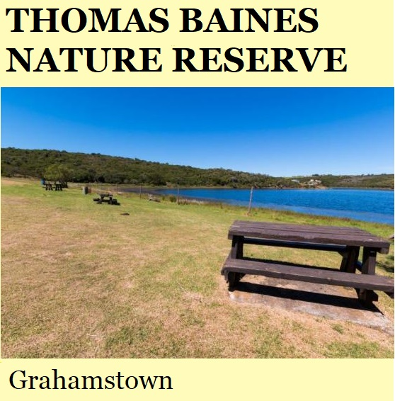 Thomas Bains Nature Reserve - Grahamstown