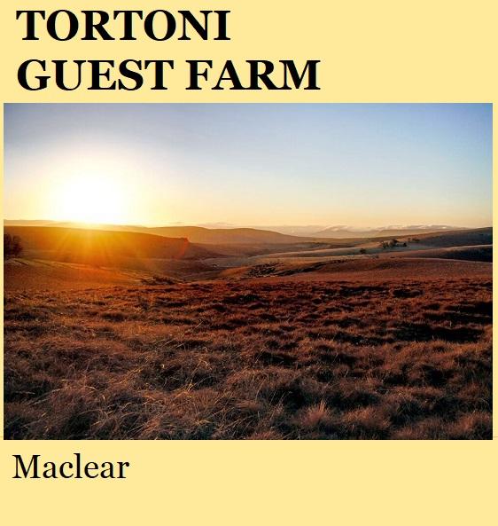 Tortoni Guest Farm - Maclear