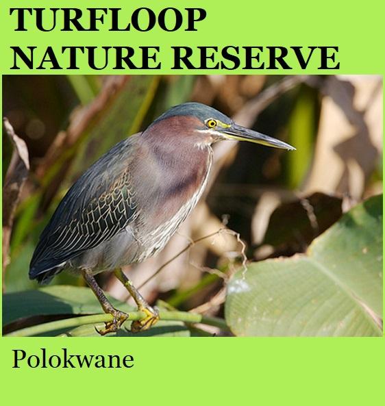 Turfloop Nature Reserve - Polokwane