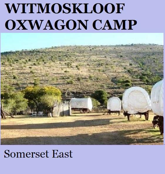 Witmoskloof Oxwagon Camp - Somerset East