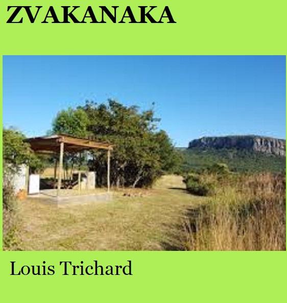 Zvakanaka - Louis Trichard