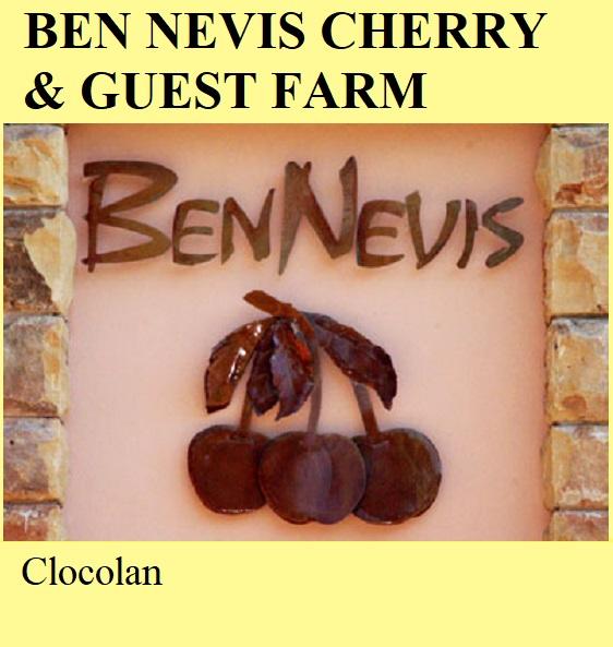 Ben Nevis Cherry and Guest Farm - Clocolan