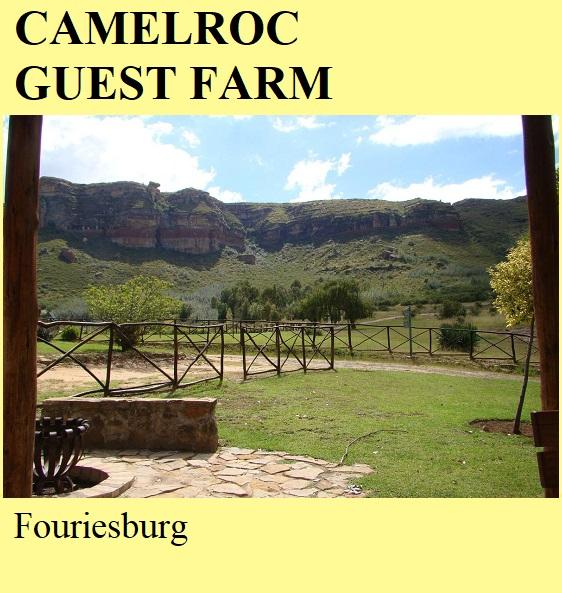 Camelroc Guest Farm - Fouriesburg