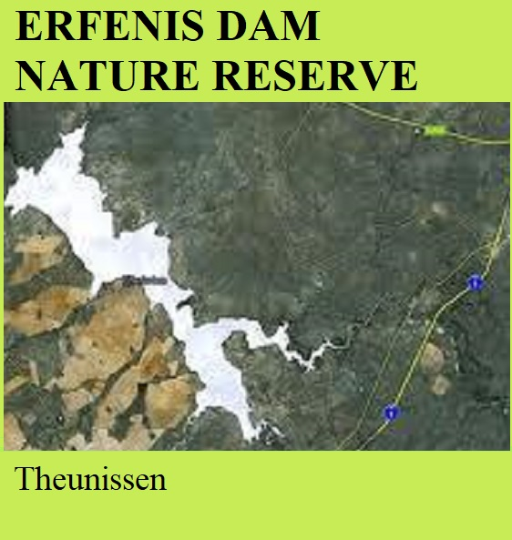 Erfenis Dam Nature Reserve -Theunissen