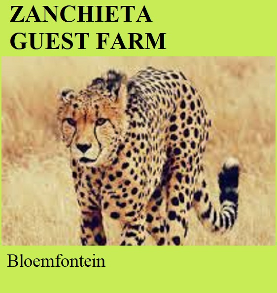 Zanchieta Guest Farm - Bloemfontein