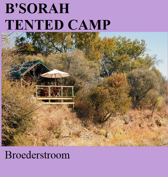 B'SorahTented Camp - Broederstroom