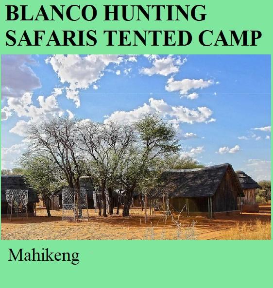 Blanco Hunting Safaris Tented Camp - Mahikeng