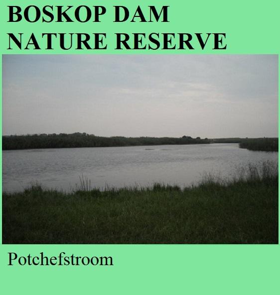 Boskop Dam Nature Reserve - Potchefstroom