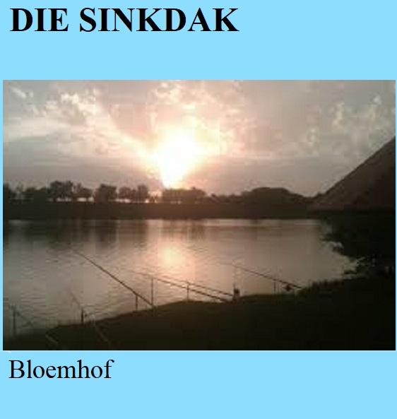 Die Sinkdak - Bloemhof
