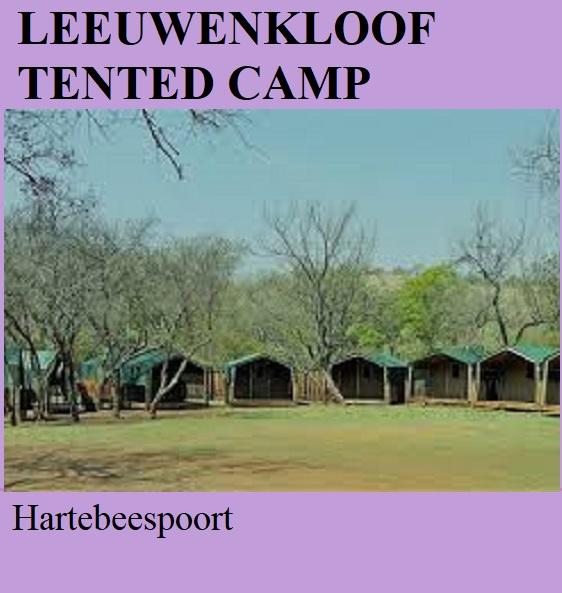 Leeuwenkloof Tented Camp - Hartebeespoort