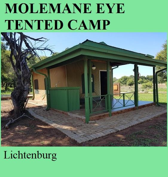 Molemane Eye Tented Camp - Lichtenburg