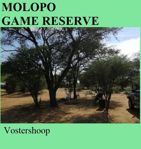 Molopo Game Reserve - Vostershoop
