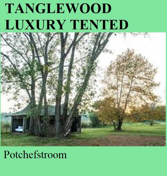 Tanglewood Luxury Tented Camp - Potchefstroom