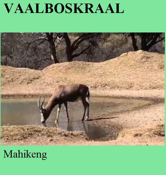 Vaalboskraal - Mahikeng