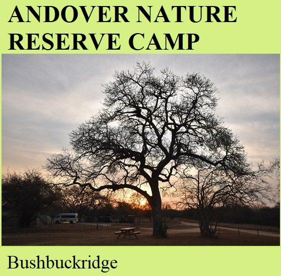 Andover Nature Reserve Camp - Bushbuchridge
