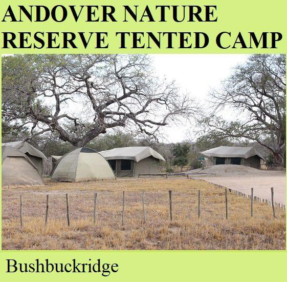 Andover Nature Reserve Tented Camp - Bushbuckridge