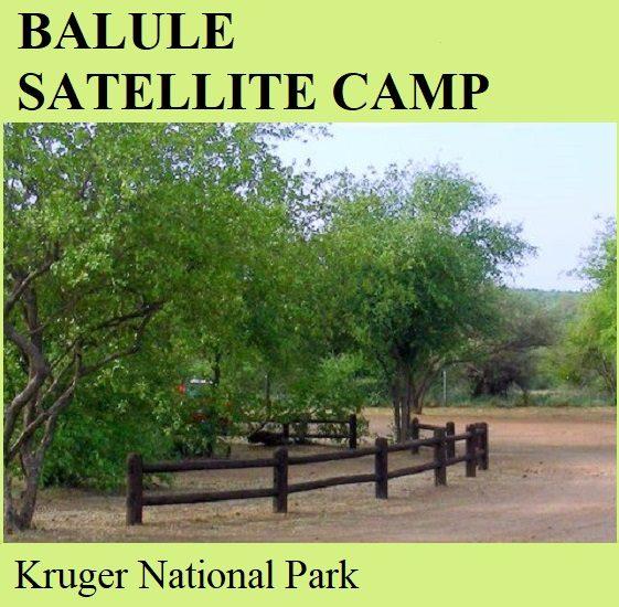 Balule Satellite Camp - Kruger National Park