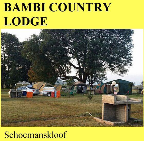 Bambi Country Lodge - Schoemanskloof