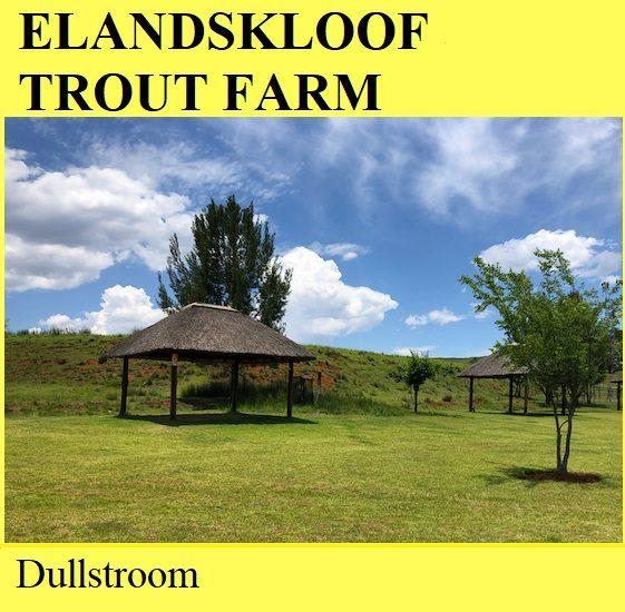Elandskloof Trout Farm - Dullstroom