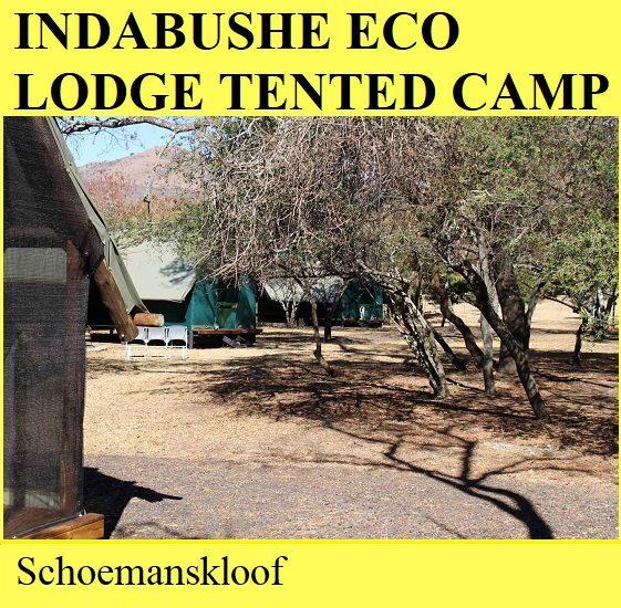 Indabusche Eco Lodge Tented Camp - Schoemanskloof