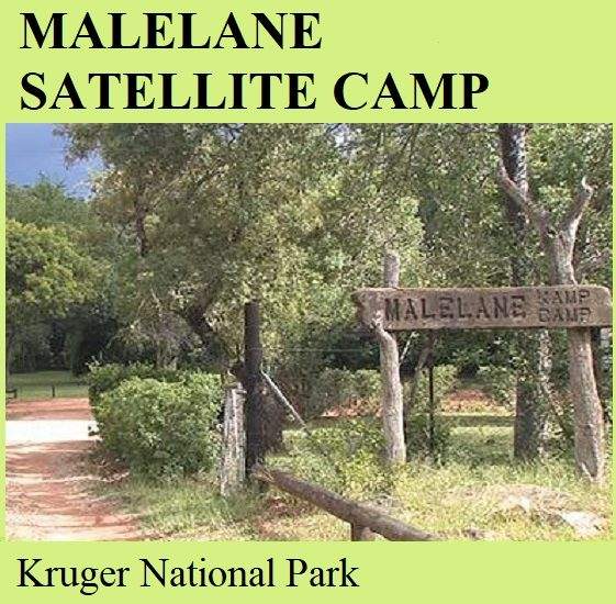 Malelane Satellite Camp- Kruger National Park
