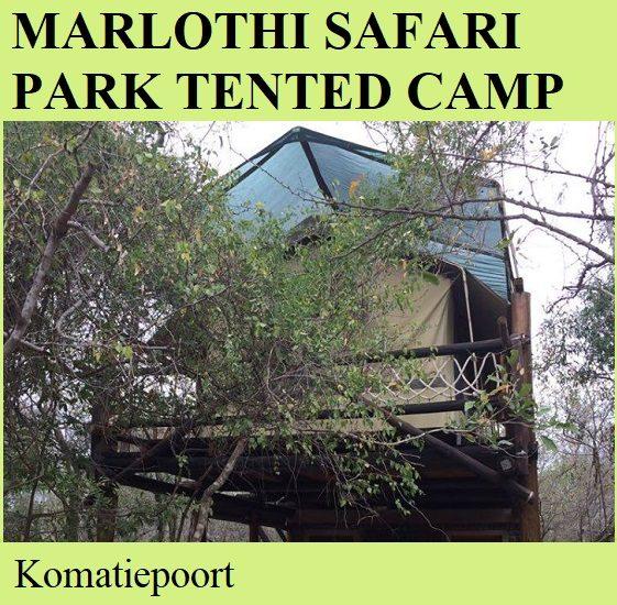 Marlothi Safari Park Tented Camp - Komatiepoort