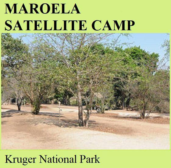 Maroela Satellite Camp - Kruger National Park