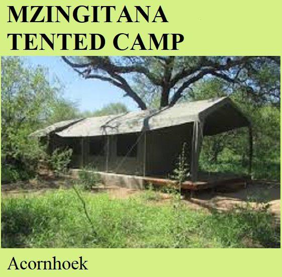 Mzingitana Tented Camp - Acornhoek