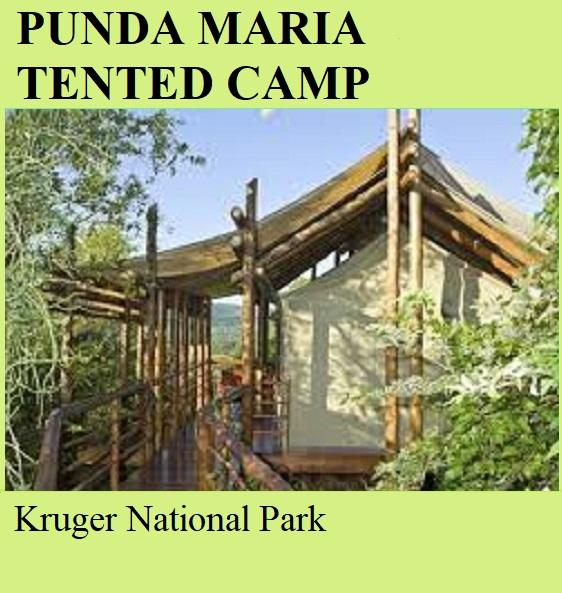 Punda Maria Tented Camp - Kruger National Park