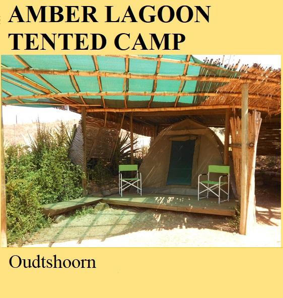 Amber Lagoon Tented Camp - Oudtshoorn