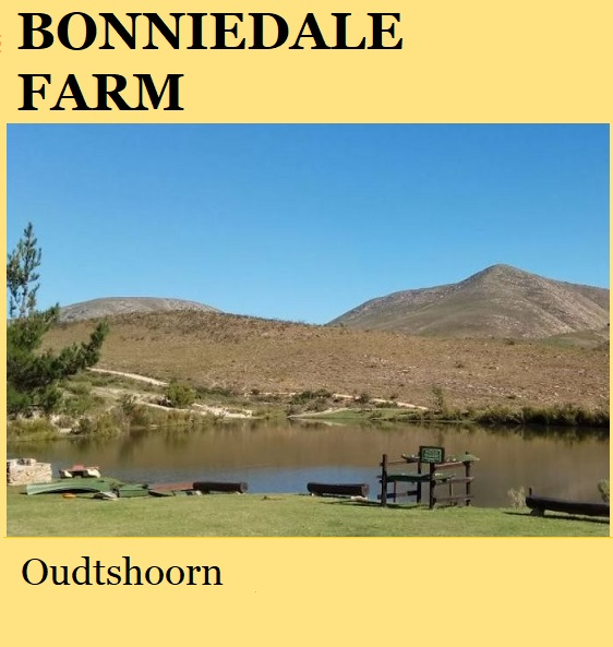 Bonniedale Farm - Oudtshoorn