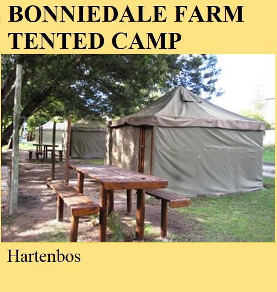 Bonniedale Farm Tented Camp - Oudtshoorn