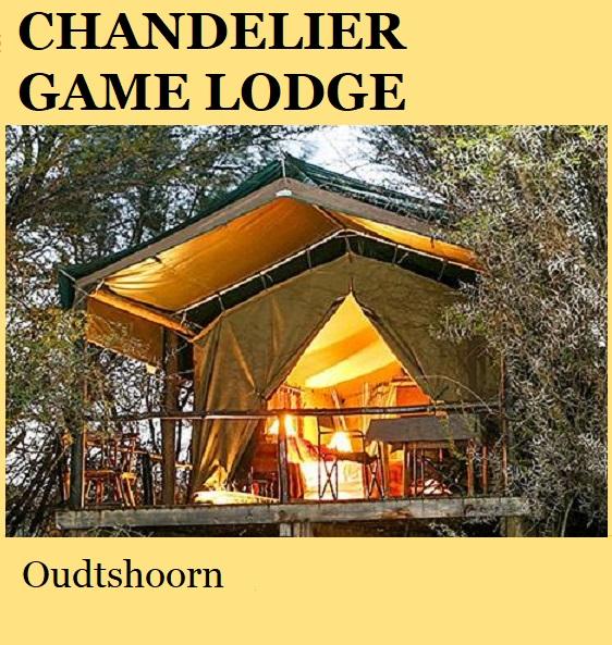 Chandelier Game Lodge Tented Camp - Oudtshoorn