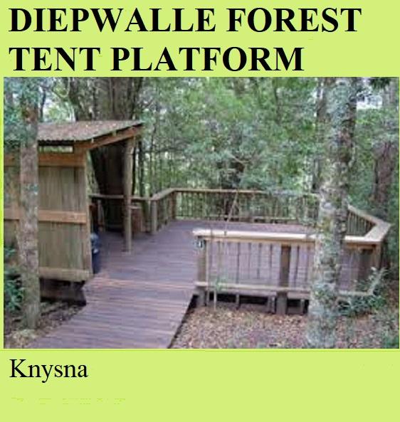 Diepwalle Forest Tent Platform - Knysna
