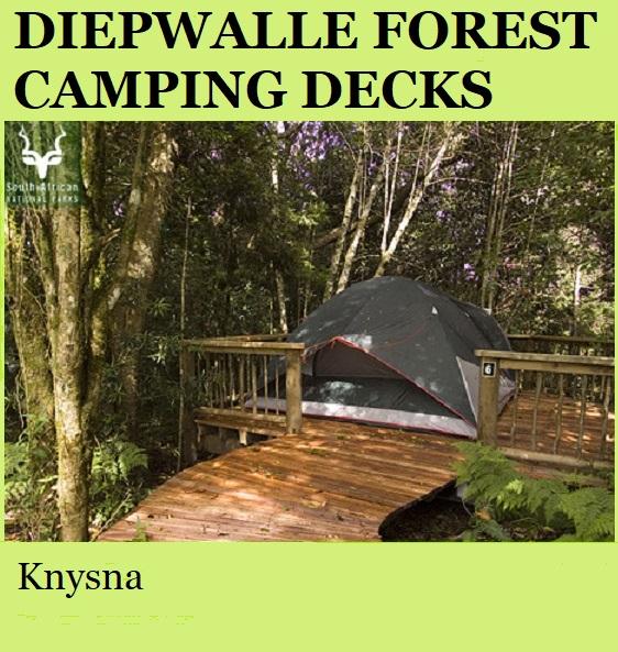 Diepwalle Forest Camping Decks - Knysna