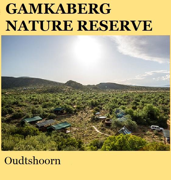 Gamkaberg Nature Reserve - Oudtshoorn