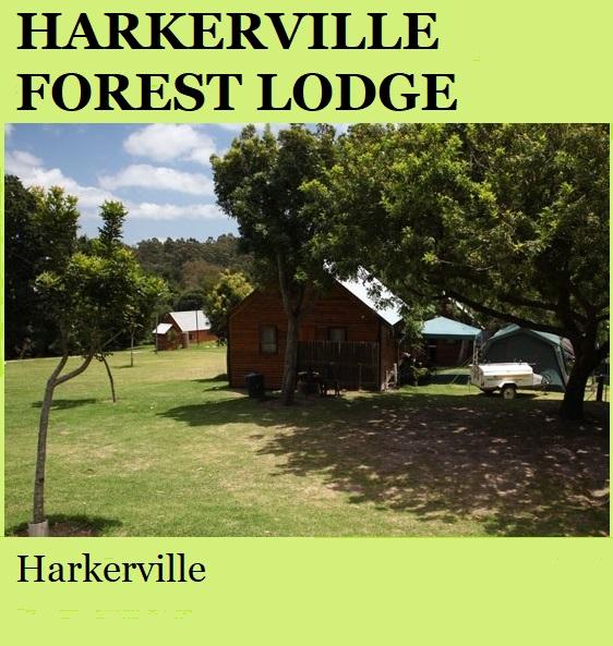 Harkerville Forest Lodge - Harkerville