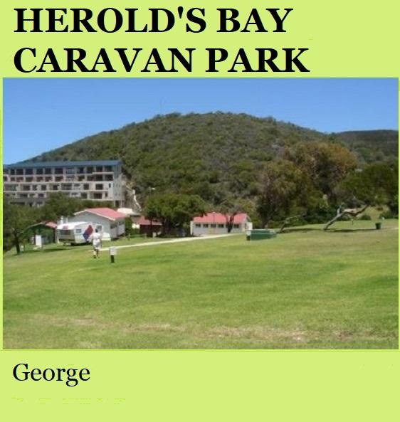 Herolds Bay Caravan Park - George