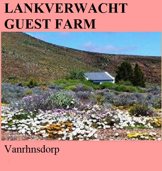 Lankverwacht Guest Farm - Vanrhnsdorp