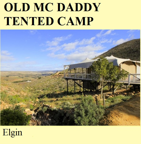 Old Mc Daddy Tented Camp - Elgin