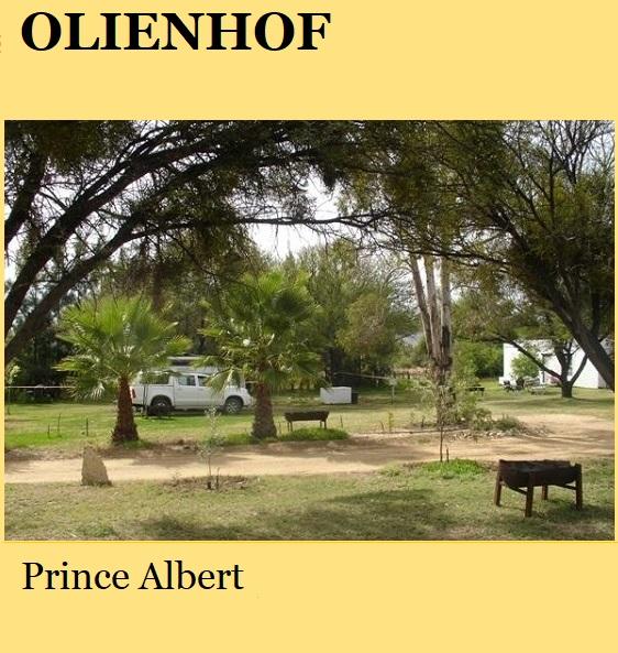 Olienhof - Prince Albert