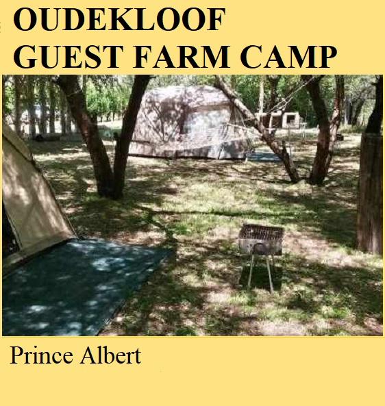 Oudekloof Guest Farm Camp - Prince Albert