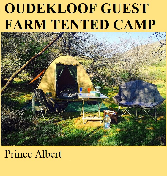 Oudekloof Guest Farm Tented Camp - Prince Albert