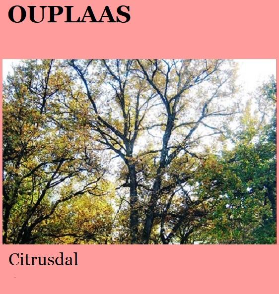 Ouplaas - Citrusdal