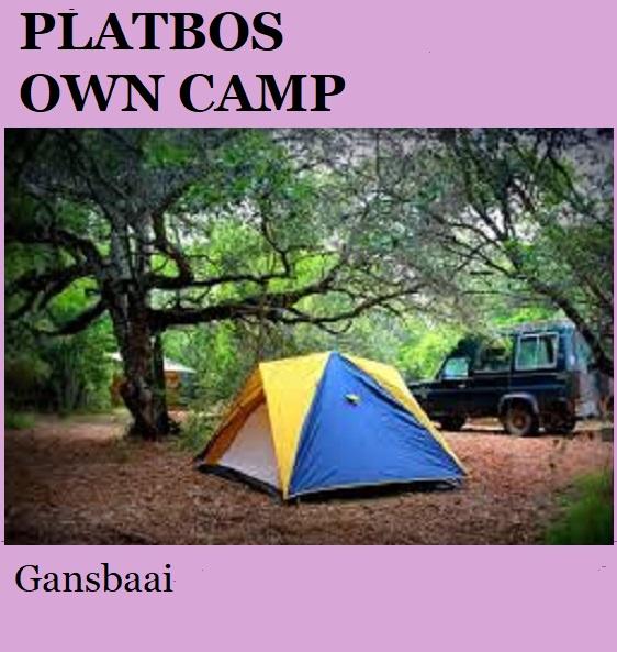 Platbos Owl Camp - Gansbaai