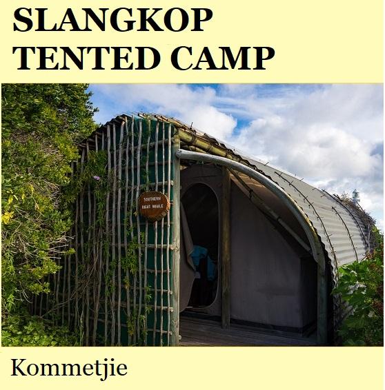 Slangkop Tented Camp - Kommetjie