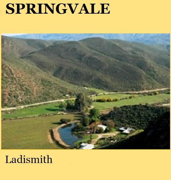 Springvale - Ladismith