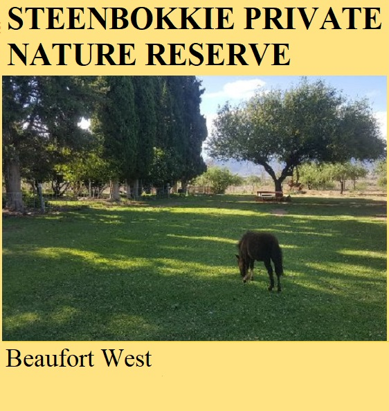 Steenbokkie Private Nature Reserve - Beaufort West