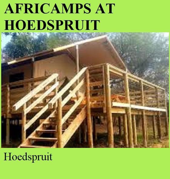 Africamps at Hoedspruit - Hoedspruit