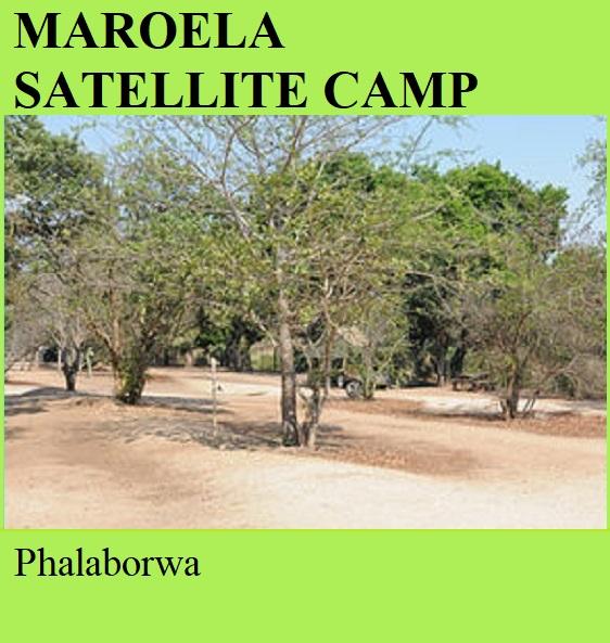 Maroela Satellite Camp - Phalaborwa